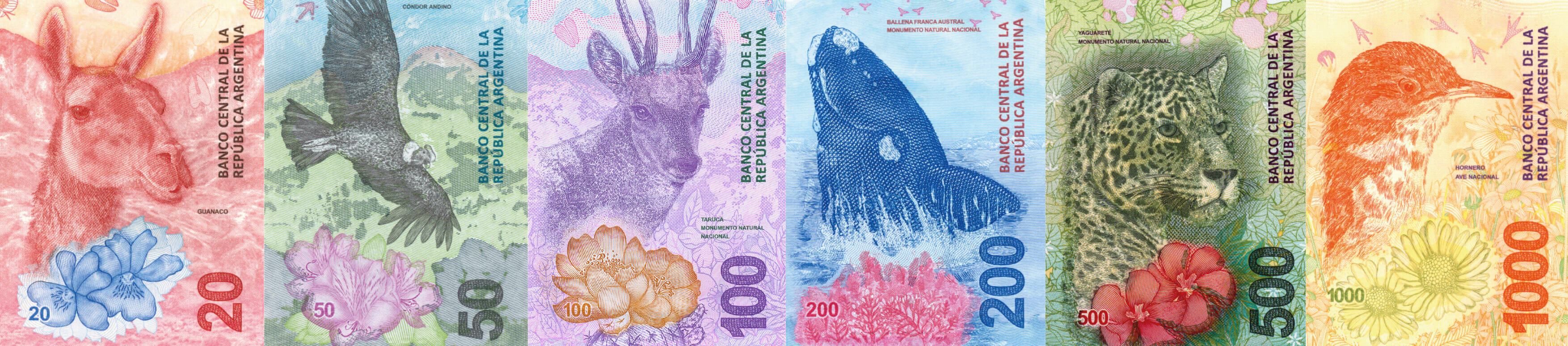 New Banknote Series Argentina's Fauna